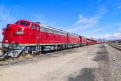 emmett_train_04-07-2020B_RS